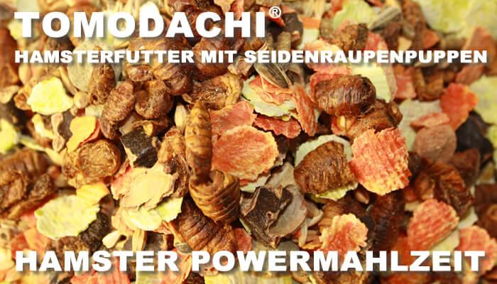 Die Powermahlzeit für Hamster ist ein Komplettfutter von Tomodachi mit Seidenraupenpuppen, Möhrenflocken, Erbsenflocken, Sonnenblumenkernen und Getreide - natürlich frisch, natürlich lecker!